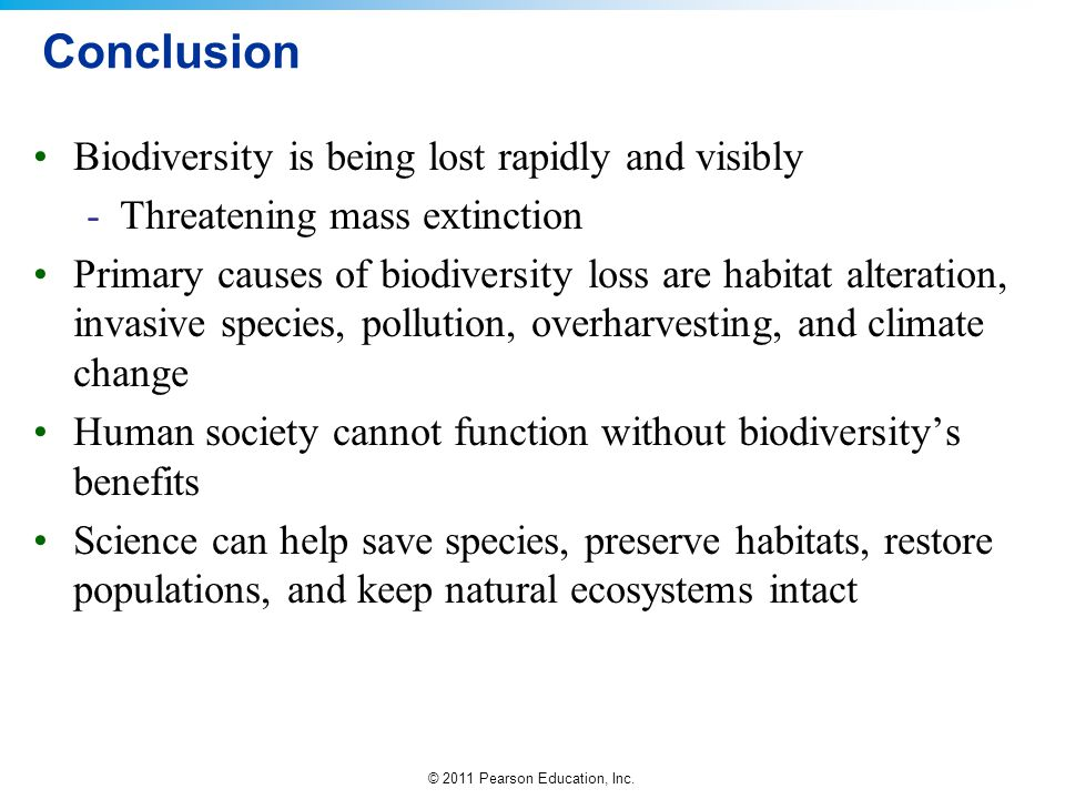 Conclusion Biodiversity is being lost rapidly and visibly
