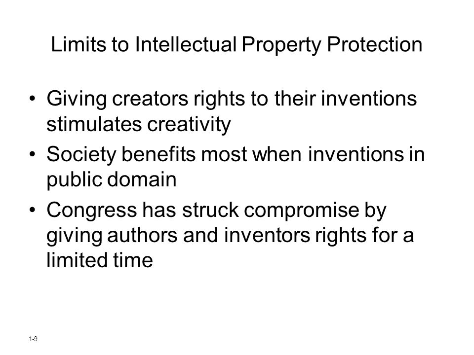 Limits to Intellectual Property Protection