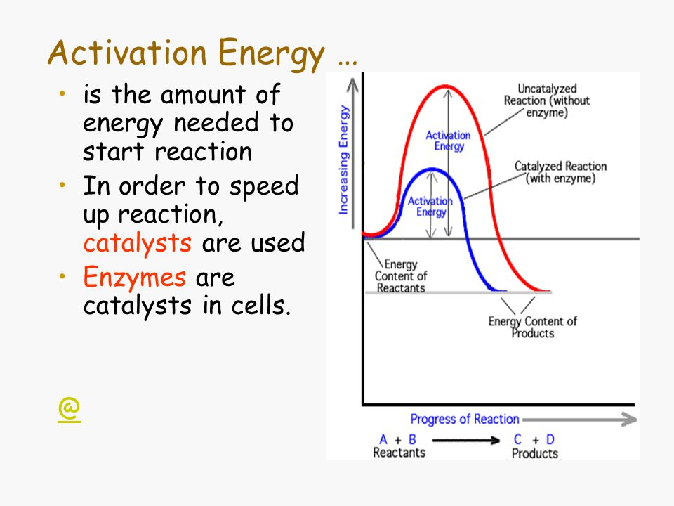 Activation Energy … is the amount of energy needed to start reaction