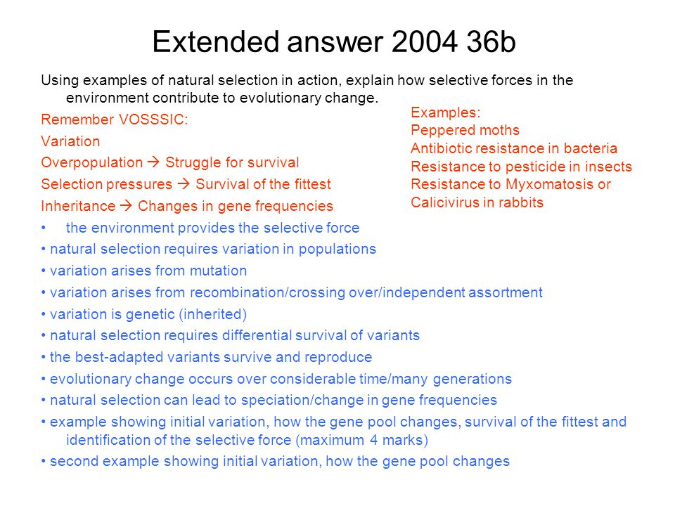 Extended answer 2004 36b