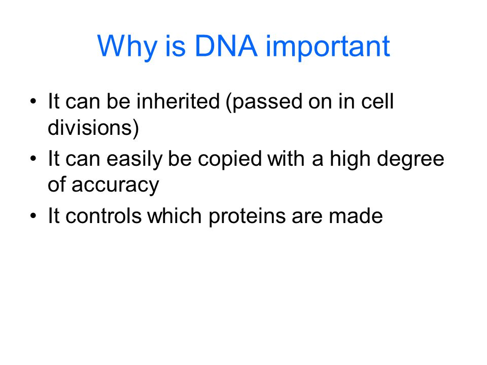 Why is DNA important It can be inherited (passed on in cell divisions)