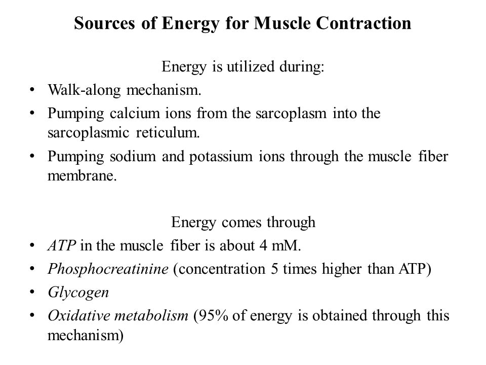 Sources of Energy for Muscle Contraction