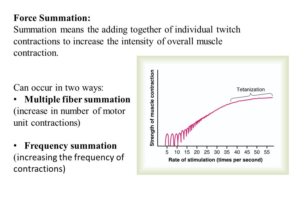 Force Summation: Summation means the adding together of individual twitch contractions to increase the intensity of overall muscle contraction.