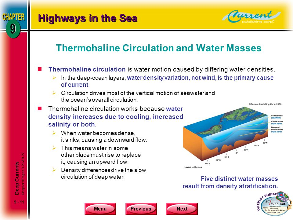 Thermohaline Circulation and Water Masses