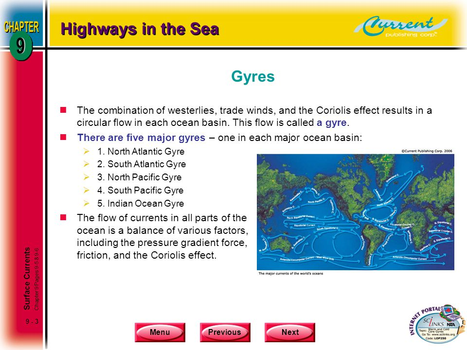 Gyres The combination of westerlies, trade winds, and the Coriolis effect results in a circular flow in each ocean basin. This flow is called a gyre.