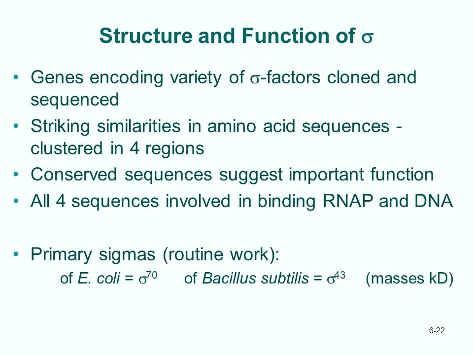 Structure and Function of s