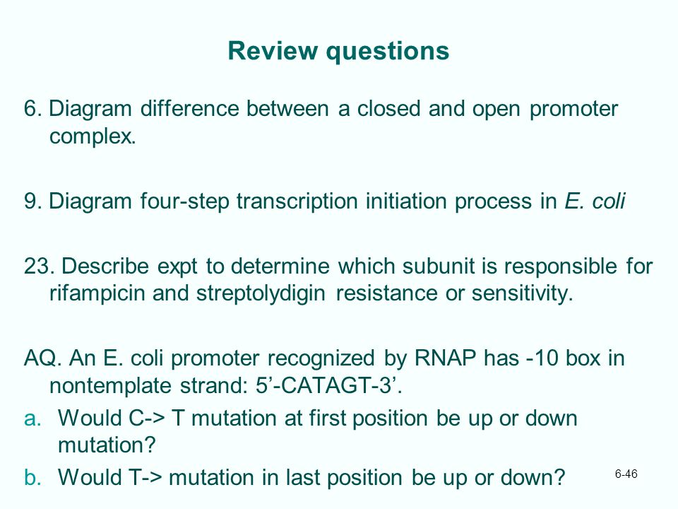 Review questions 6. Diagram difference between a closed and open promoter complex. 9. Diagram four-step transcription initiation process in E. coli.