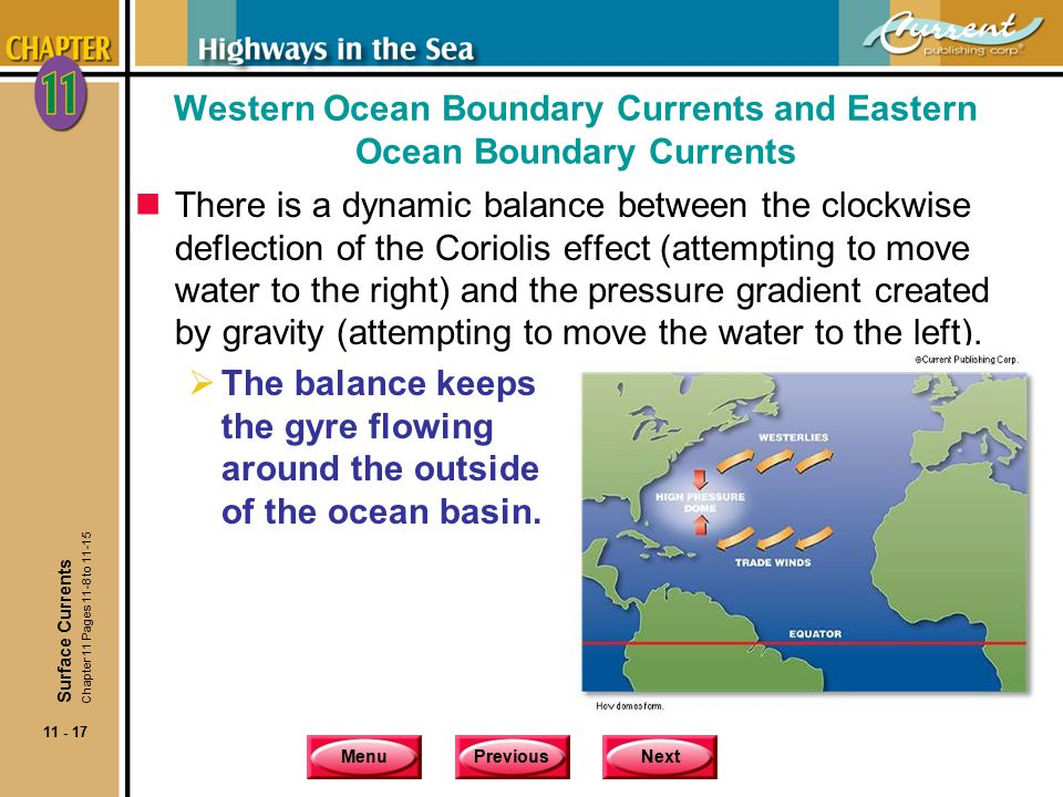 Western Ocean Boundary Currents and Eastern Ocean Boundary Currents