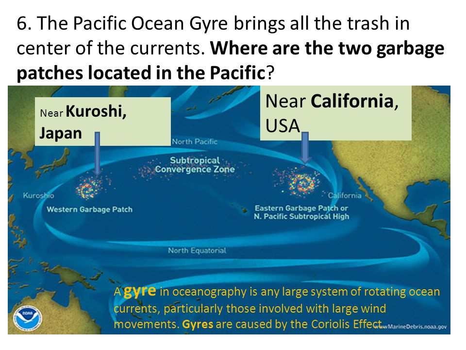 6. The Pacific Ocean Gyre brings all the trash in center of the currents. Where are the two garbage patches located in the Pacific