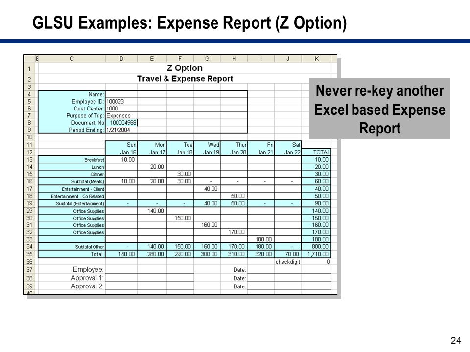 GLSU Examples: Expense Report (Z Option)