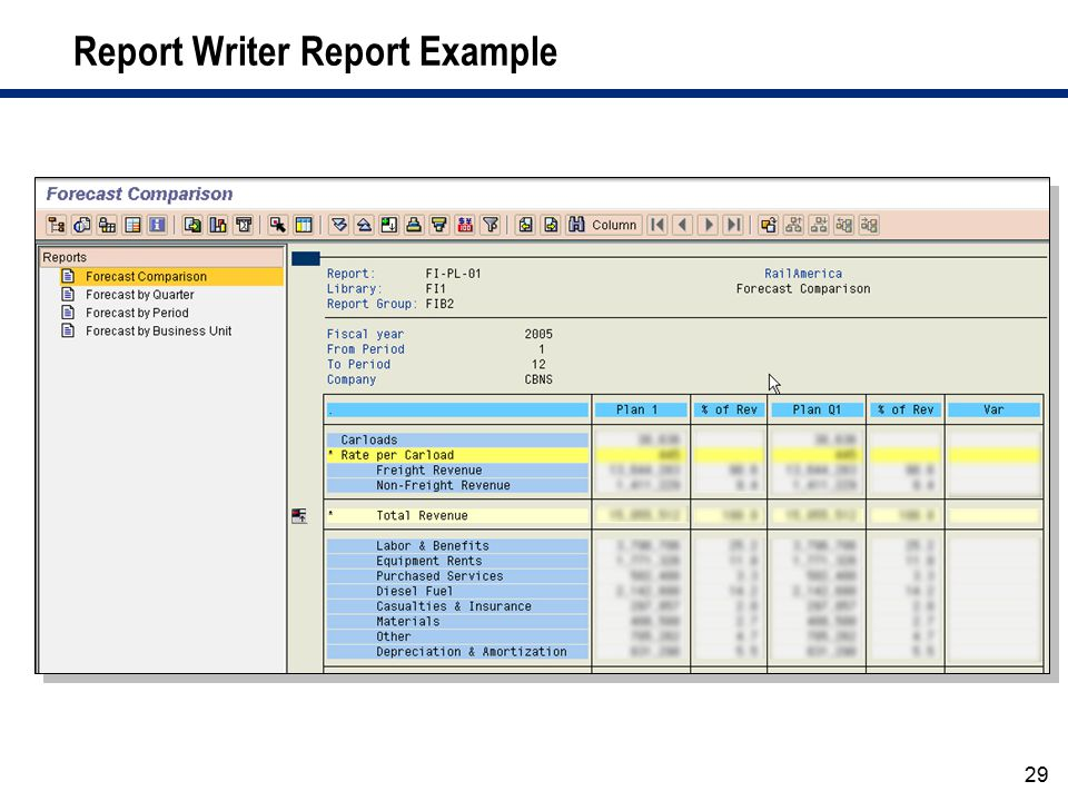 Report Writer Report Example