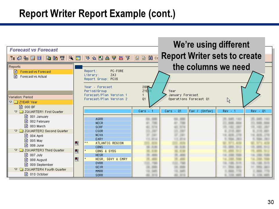 Report Writer Report Example (cont.)