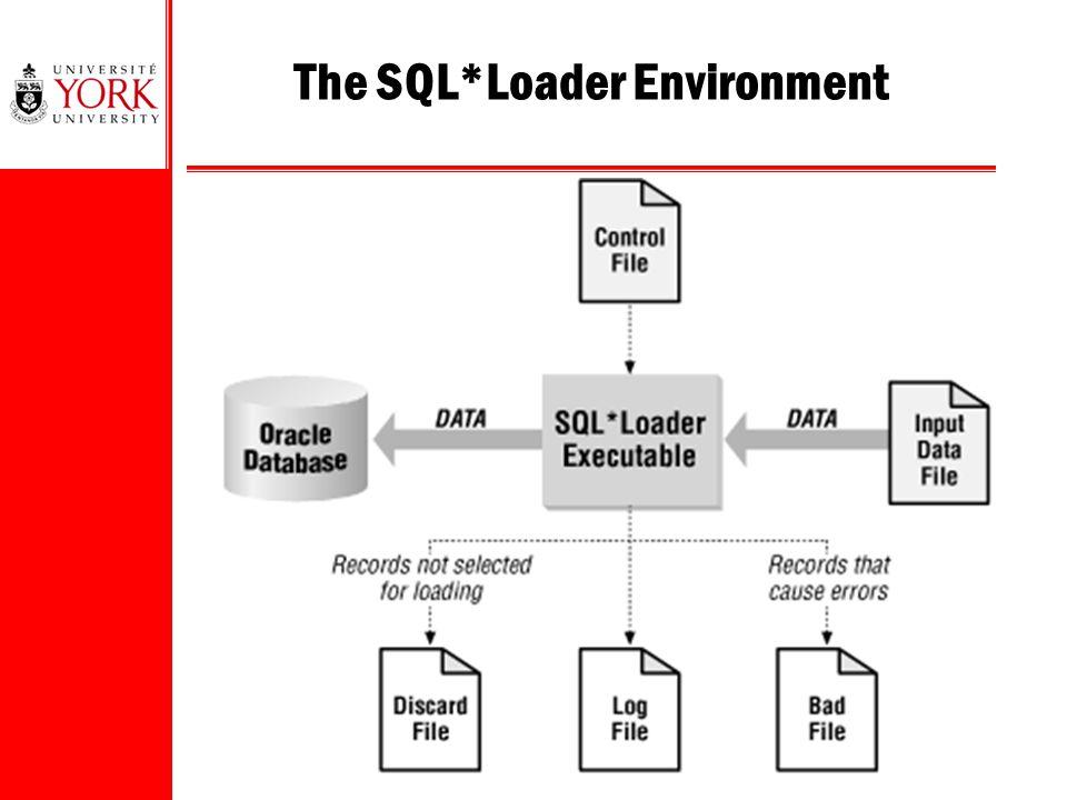 The SQL*Loader Environment