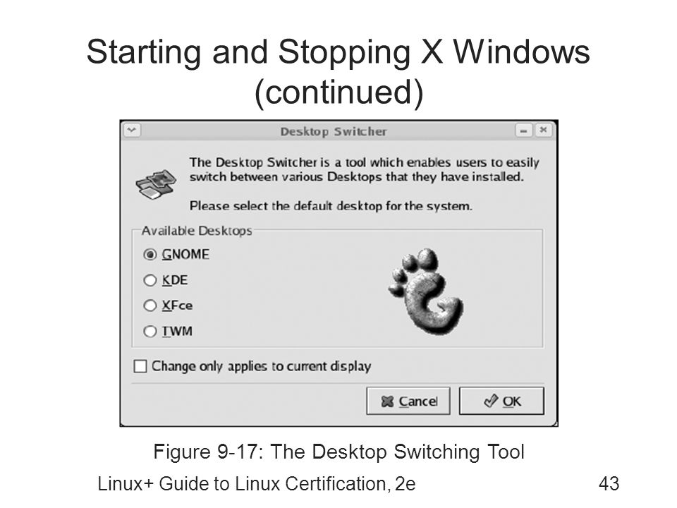 Starting and Stopping X Windows (continued)