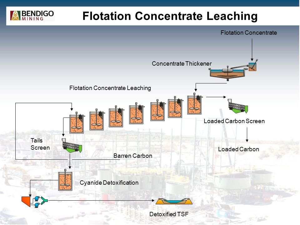 Flotation Concentrate Leaching