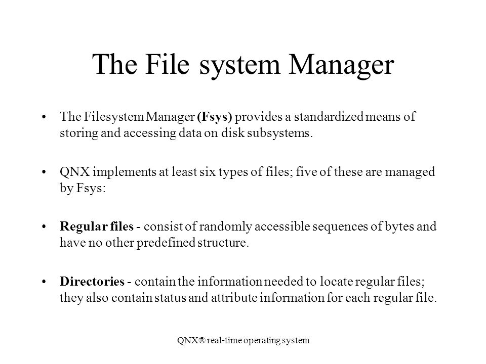 The File system Manager