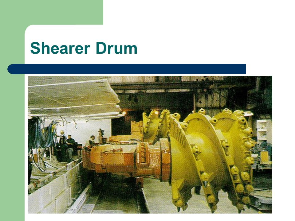 Shearer Drum