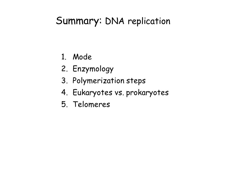 Summary: DNA replication