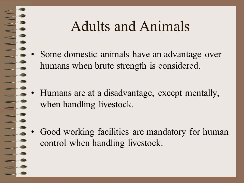 Adults and Animals Some domestic animals have an advantage over humans when brute strength is considered.
