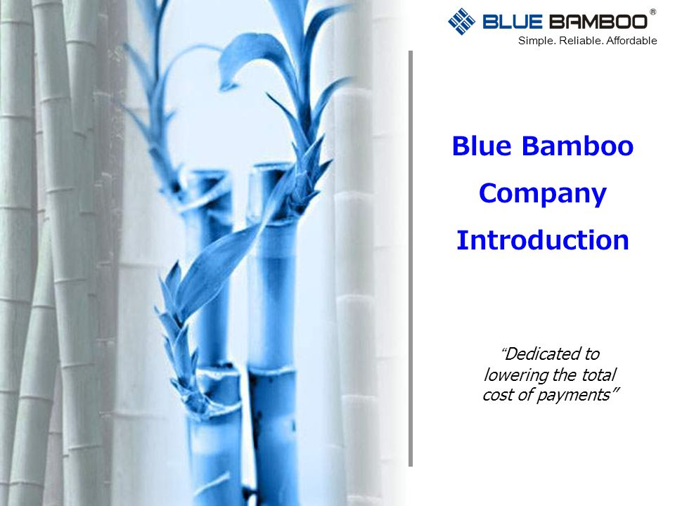 Blue Bamboo Company Introduction
