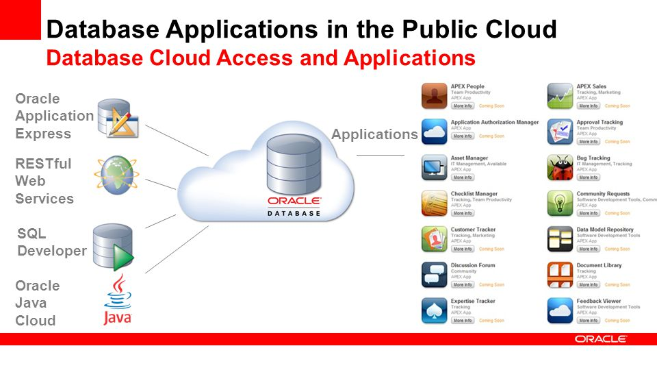 Database Applications in the Public Cloud Database Cloud Access and Applications