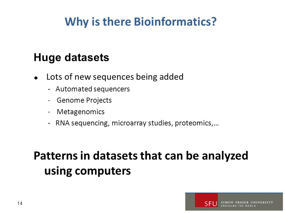 Why is there Bioinformatics