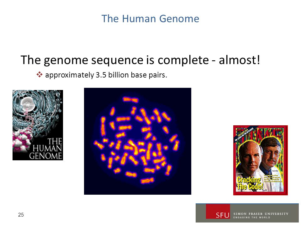 The genome sequence is complete - almost!