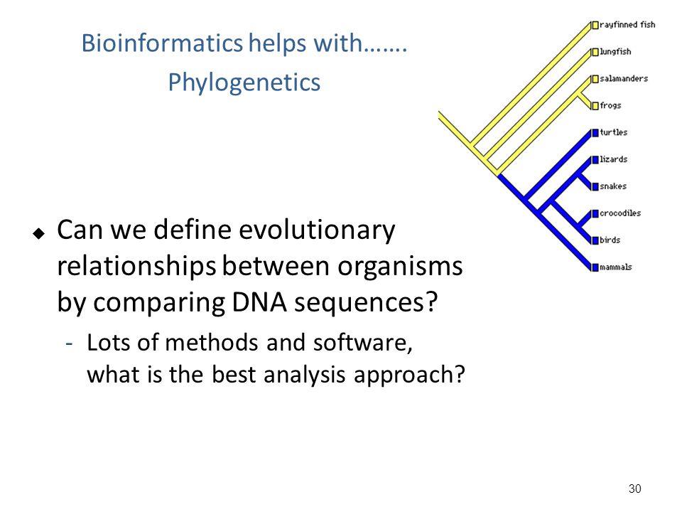 Bioinformatics helps with……. Phylogenetics