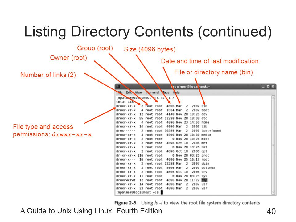 Listing Directory Contents (continued)