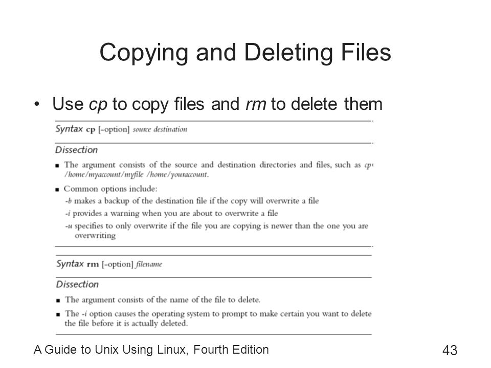 Copying and Deleting Files