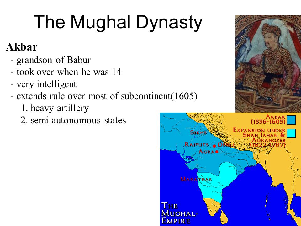 The Mughal Dynasty Akbar - grandson of Babur