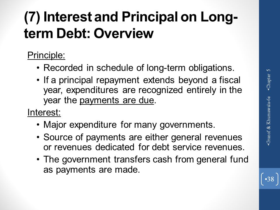 (7) Interest and Principal on Long-term Debt: Overview