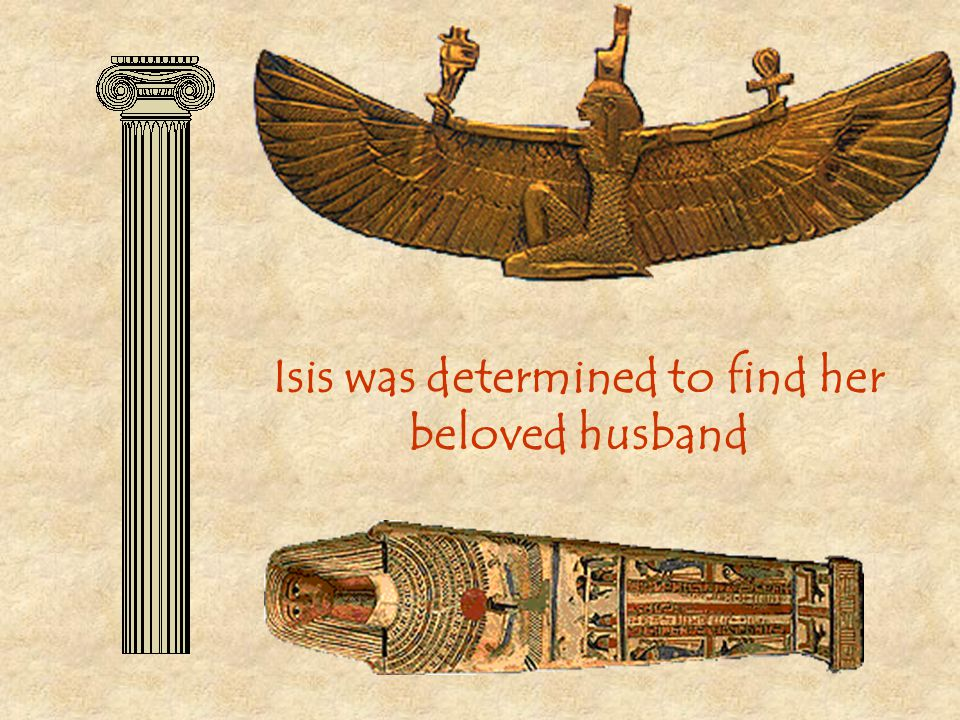 Isis was determined to find her beloved husband