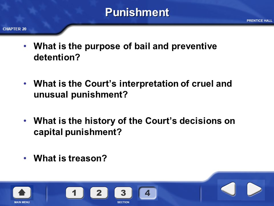 Punishment What is the purpose of bail and preventive detention