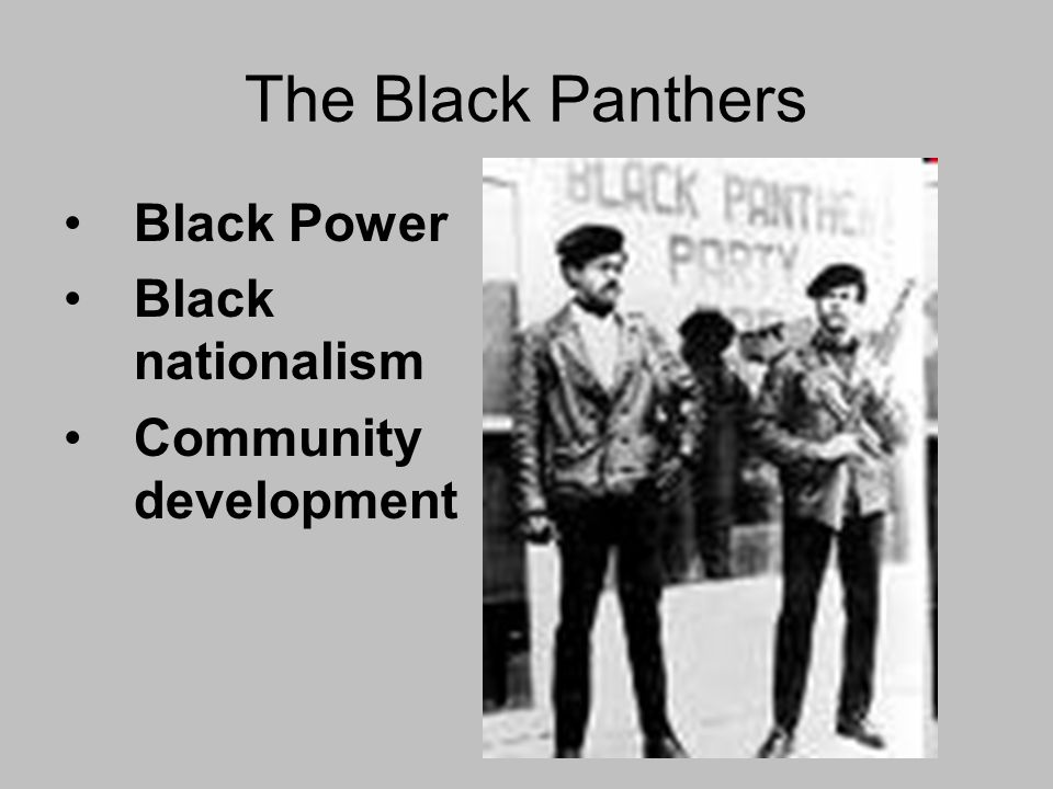 The Black Panthers Black Power Black nationalism Community development