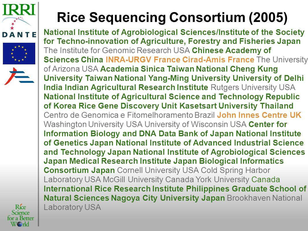 Rice Sequencing Consortium (2005)