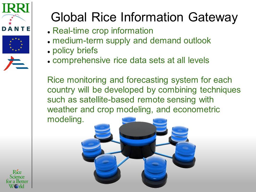 Global Rice Information Gateway