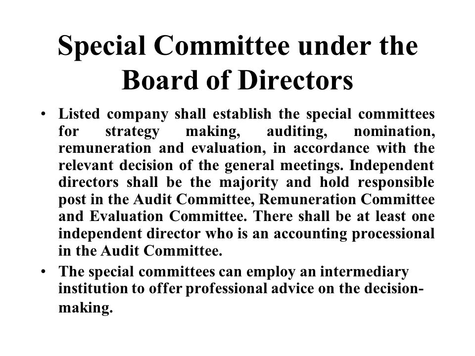 Special Committee under the Board of Directors
