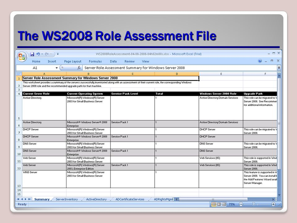 The WS2008 Role Assessment File
