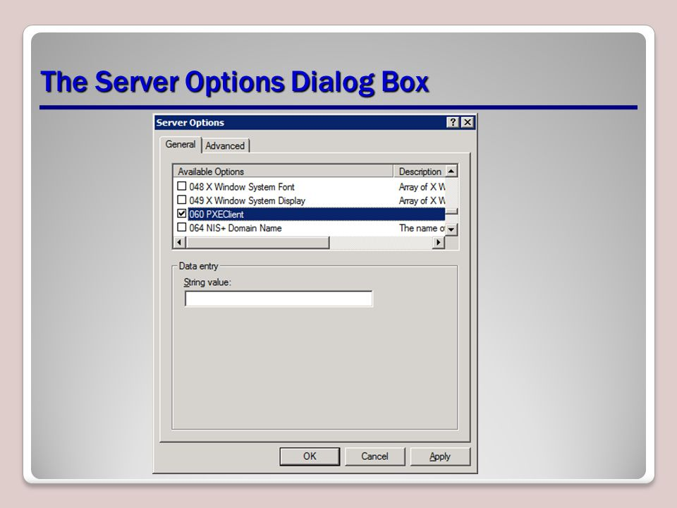 The Server Options Dialog Box