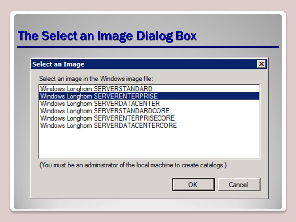 The Select an Image Dialog Box