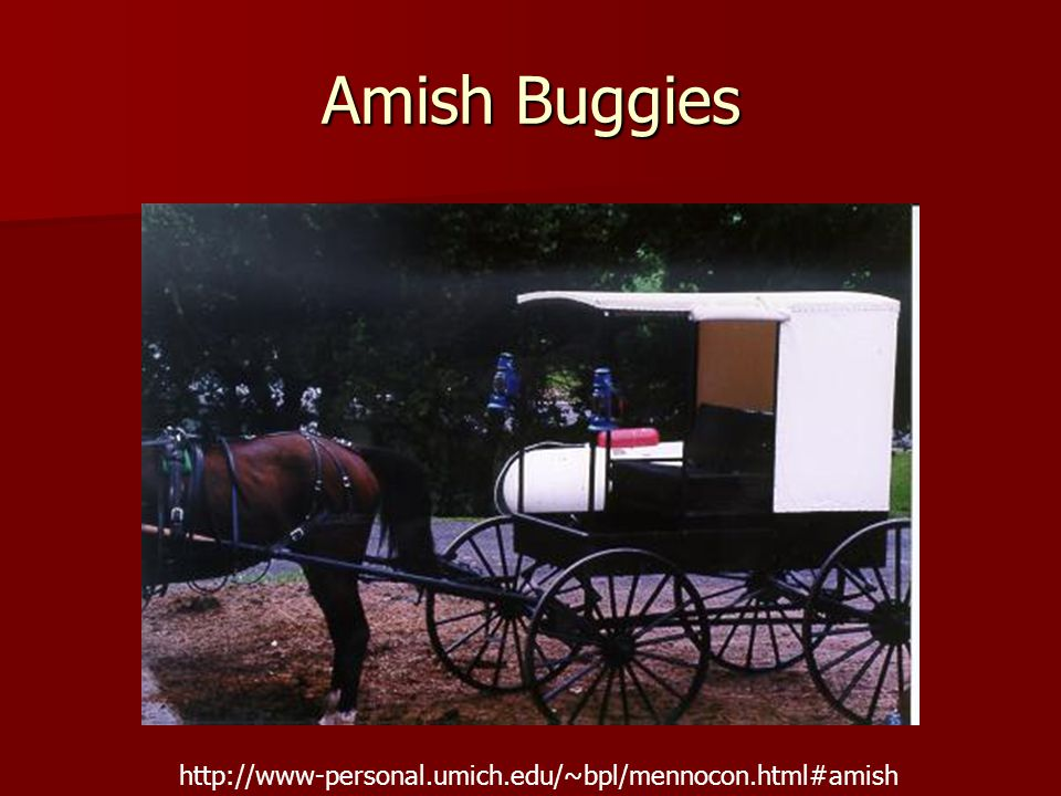 Amish Buggies http://www-personal.umich.edu/~bpl/mennocon.html#amish