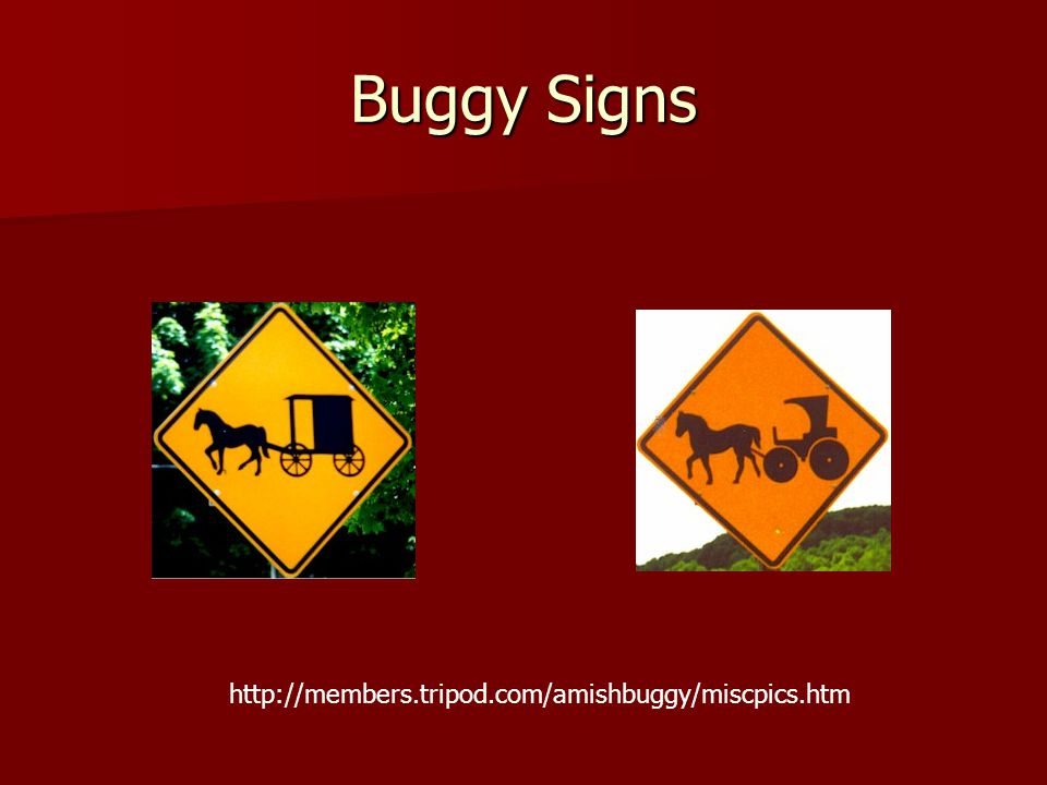 Buggy Signs http://members.tripod.com/amishbuggy/miscpics.htm