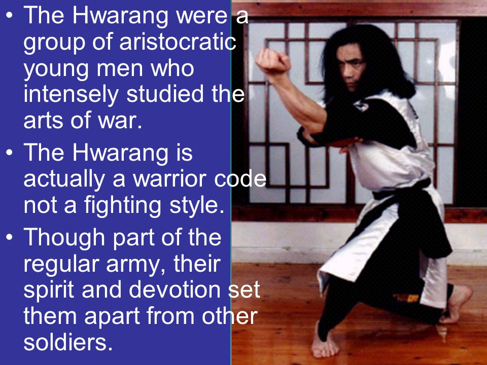 The Hwarang were a group of aristocratic young men who intensely studied the arts of war.