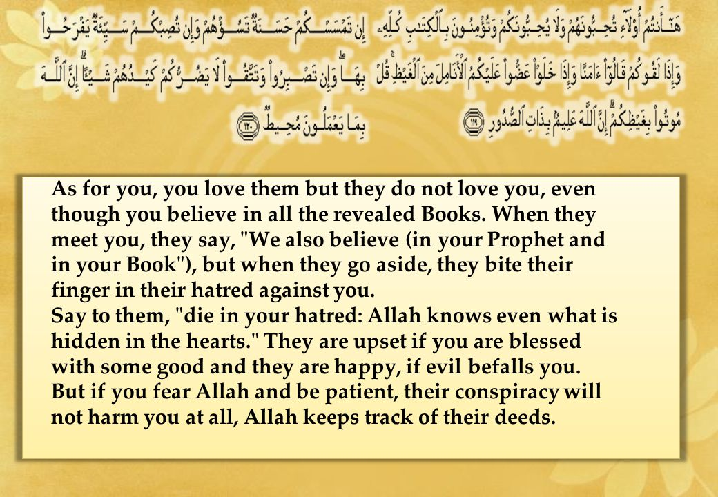As for you, you love them but they do not love you, even though you believe in all the revealed Books.