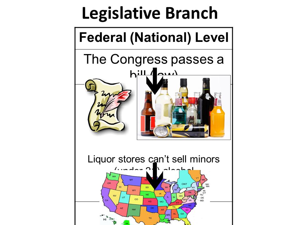 Federal (National) Level