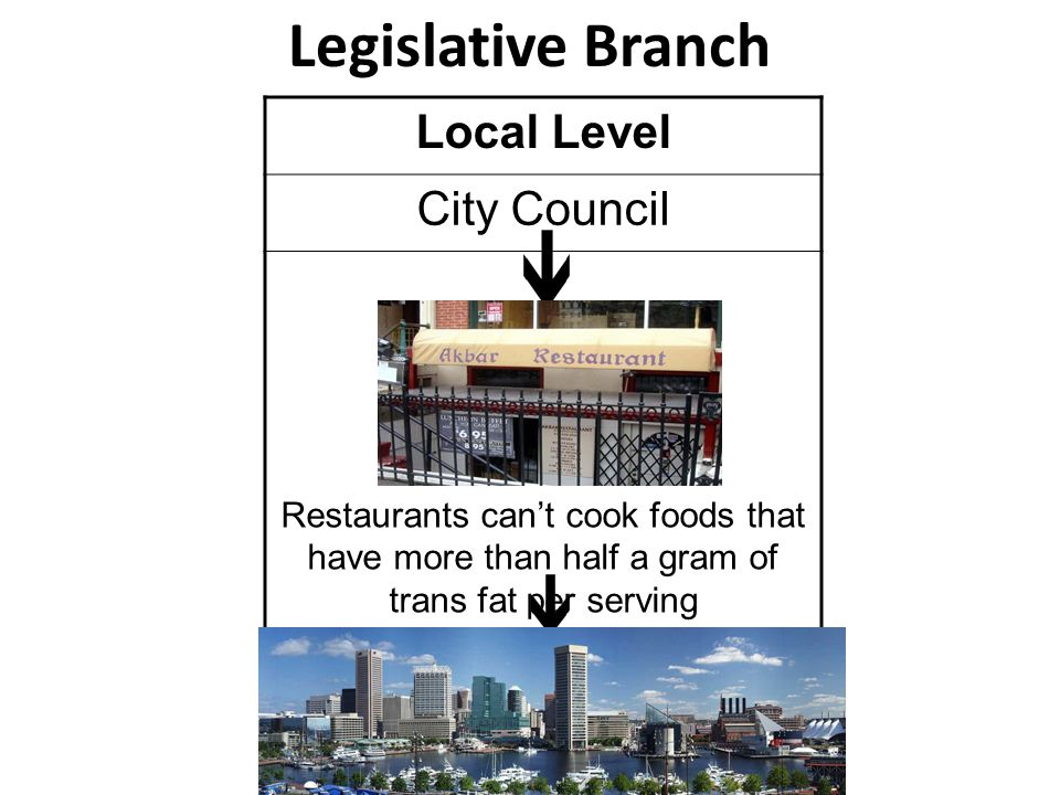 Legislative Branch Local Level City Council