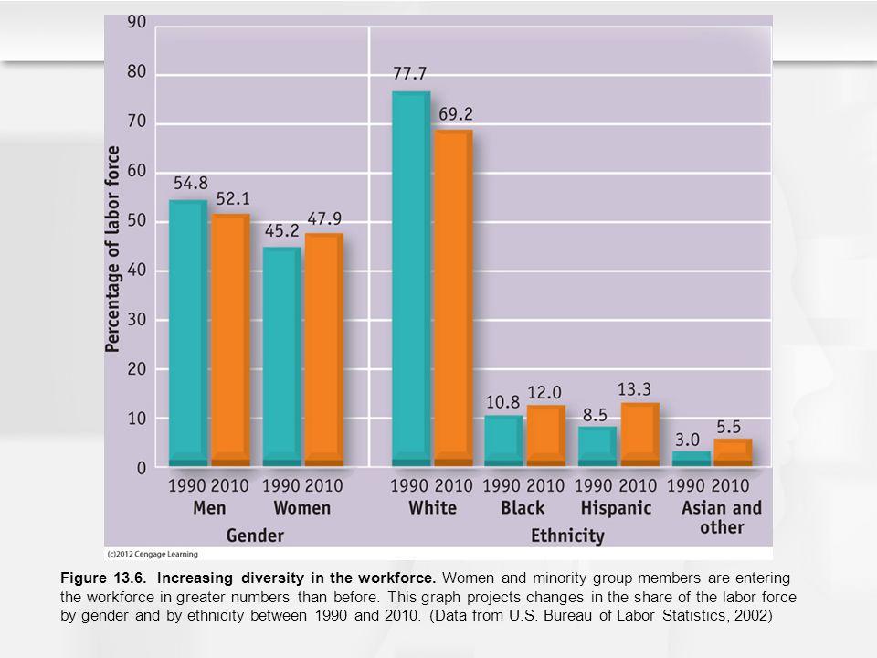Figure 13. 6. Increasing diversity in the workforce