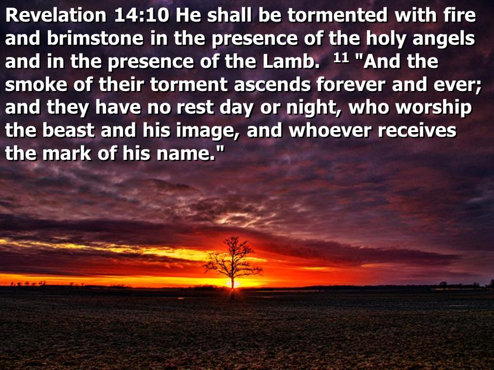 Revelation 14:10 He shall be tormented with fire and brimstone in the presence of the holy angels and in the presence of the Lamb.