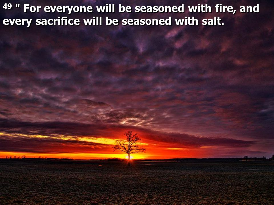 49 For everyone will be seasoned with fire, and every sacrifice will be seasoned with salt.